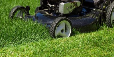 Where to Find the Best Deals on a Murray Lawn Mower